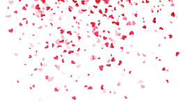 Hearts background, Valentine Day falling heart pink confetti. On white backdrop. Saint Valentines greeting card design. Flower petal in shape of heart Royalty Free Stock Images