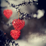 Hearts and barbed wire stock photography