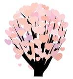 Hearts on bush Stock Image