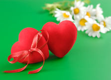 Hearts and chamomiles Royalty Free Stock Image