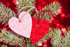 Hearts on fir tree branch Stock Photo