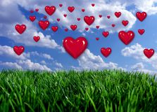 Hearts floating above field. Red hearts floating above field of green Royalty Free Stock Image