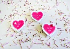 Hearts on flower petals Royalty Free Stock Image