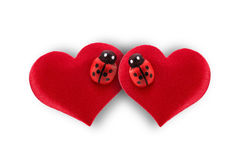 Hearts and ladybug for valentines day Royalty Free Stock Photos