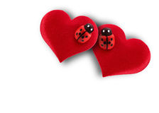 Hearts and ladybug for valentines day Royalty Free Stock Image