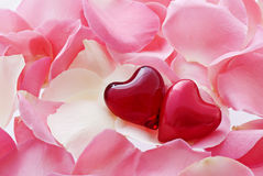 Hearts in Love Royalty Free Stock Photos