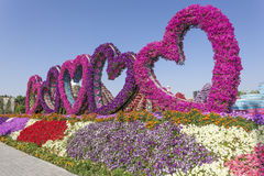 Hearts made of flowers at the Miracle Garden in Dubai Stock Photography