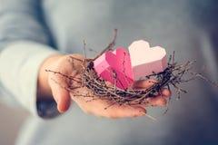 Hearts nest Stock Photography