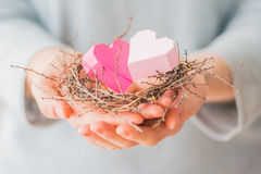 Hearts nest Stock Images