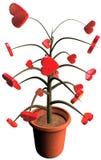 hearts plant Στοκ εικόνα με δικαίωμα ελεύθερης χρήσης