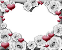 Hearts and roses photo frame. Black and white roses and red hearts framing the image. Insert your photo. Clipping path included Stock Images