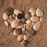 Hearts shape from sea shells. Sea shells in shape of heart on sand outdoors Stock Image