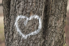 Hearts on a tree. Painted hearts on a tree Royalty Free Stock Photography