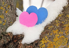 Hearts, valentines day card Stock Photography
