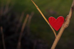 Hearts and Valentines day decoration in park.Outdoor compositions. Royalty Free Stock Images