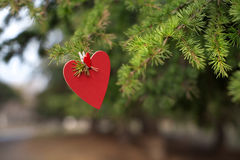 Hearts and Valentines day decoration in park.Outdoor compositions. Royalty Free Stock Photography