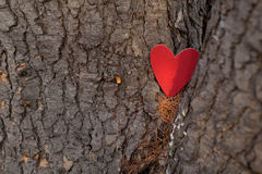 Hearts and Valentines day decoration in park.Outdoor compositions. Royalty Free Stock Photos