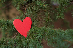 Hearts and Valentines day decoration in park.Outdoor compositions. Stock Photos
