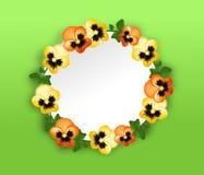 Heartsease cirkelbakgrund Arkivfoto