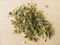Heartsease, Violae tricoloris herba Stock Image