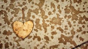 Heartshaped liść Fotografia Stock