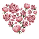 Heartshapedvorm met roze bloeiende rozen wordt gevuld die vector illustratie