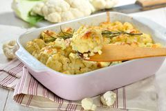 Cauliflower gratin served in a pink baking dish Royalty Free Stock Image
