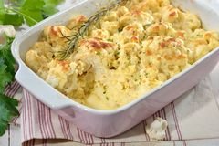 Cauliflower gratin served in a pink baking dish Stock Photography