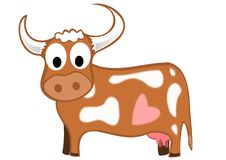 Hearty cow Royalty Free Stock Photography