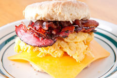 Hearty egg, crispy bacon cheese sandwich on a homemade butterm Royalty Free Stock Photos