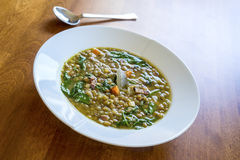 Hearty Green Lentil Soup Royalty Free Stock Photo