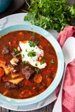 Hearty homemade beef stew. With fresh parsley stock photography