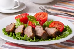 Hearty lunch: fried duck meat with vegetables  horizontal Royalty Free Stock Photos