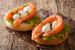 Hearty sandwiches with salmon, mozzarella, lettuce, onion and ra Stock Images