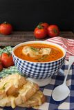 Hearty tomato soup. With rosemary and slices of cheese baguette royalty free stock photos