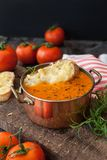 Hearty tomato soup. With rosemary and slices of cheese baguette royalty free stock photography