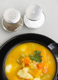 Hearty Vegetable Soup Stock Photography