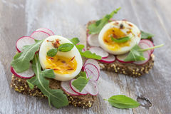A hearty whole wheat sandwich with arugula, radishes and eggs Stock Images