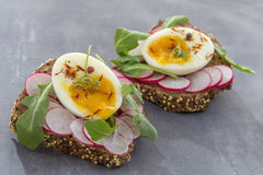 A hearty whole wheat sandwich with arugula, radishes and eggs Royalty Free Stock Photos
