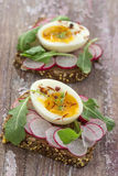 A hearty whole wheat sandwich with arugula, radishes and eggswooden background Stock Image