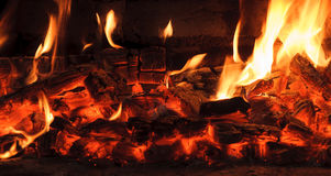 Heat burnt logs. Blazing camp fire Royalty Free Stock Images