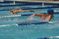 A heat of butterfly swimmers racing at a swim meet. A heat of female butterfly swimmers racing at an outdoor swim meet Royalty Free Stock Photography