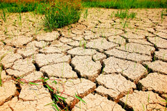 Heat and drought Royalty Free Stock Images