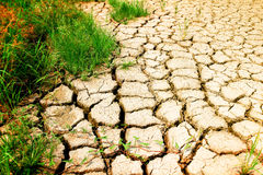 Heat and drought Stock Photography