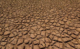 Heat , drought parched ground . Heat , drought parched ground on dry river Royalty Free Stock Photos
