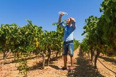 Heat exhausted young farmer cooling himself in Stock Photos