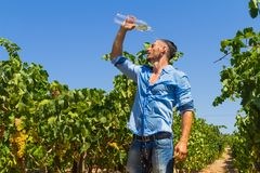 Heat exhausted young farmer cooling himself in Royalty Free Stock Image