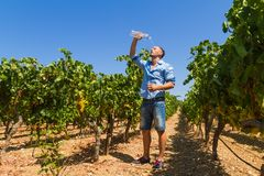 Heat exhausted young farmer cooling himself in Stock Images