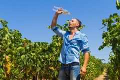 Heat exhausted young farmer cooling himself in Stock Photo