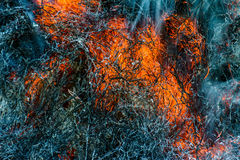 Heat of fire. stock images